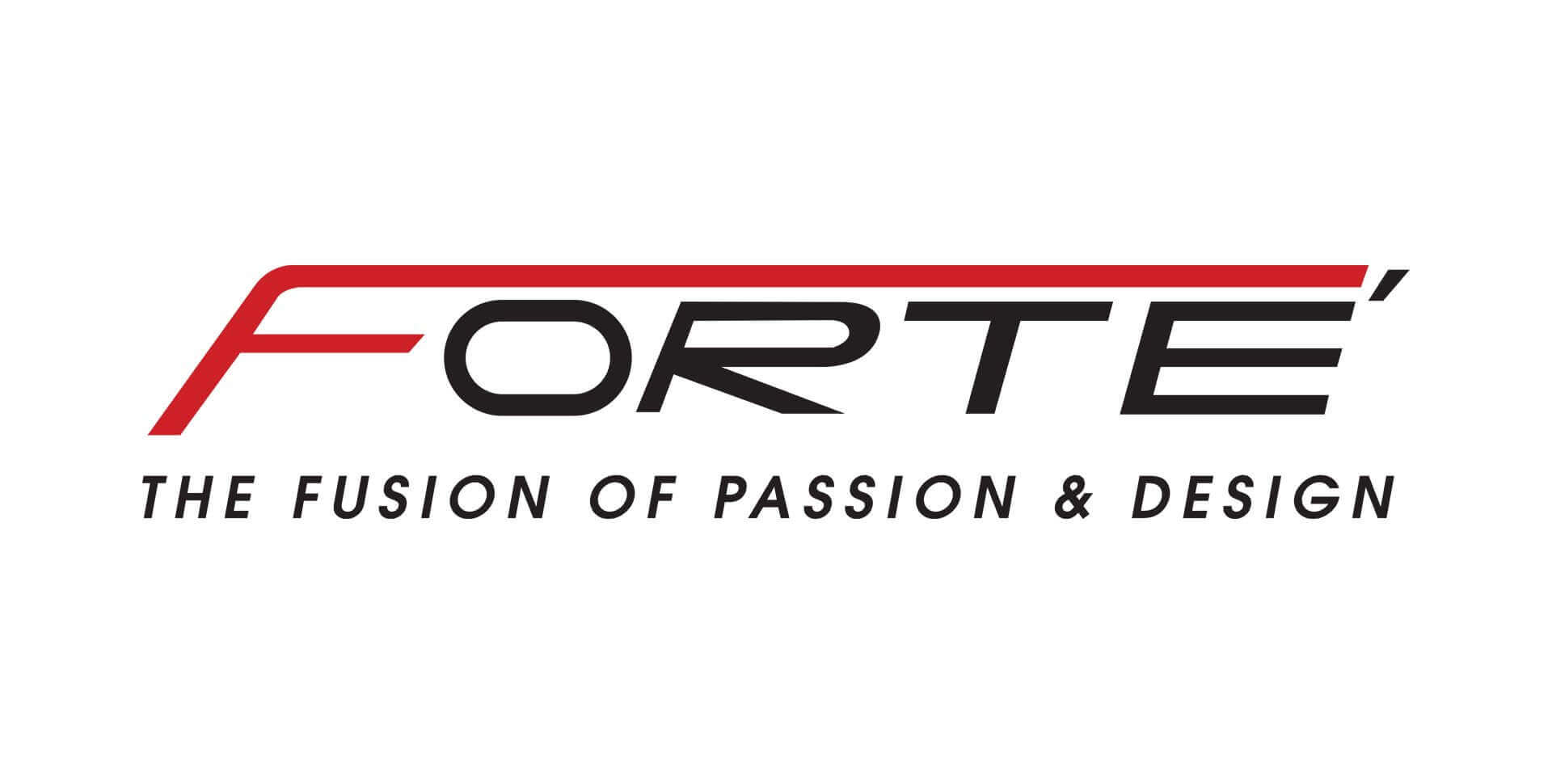 2003 – The Launch of FORTE